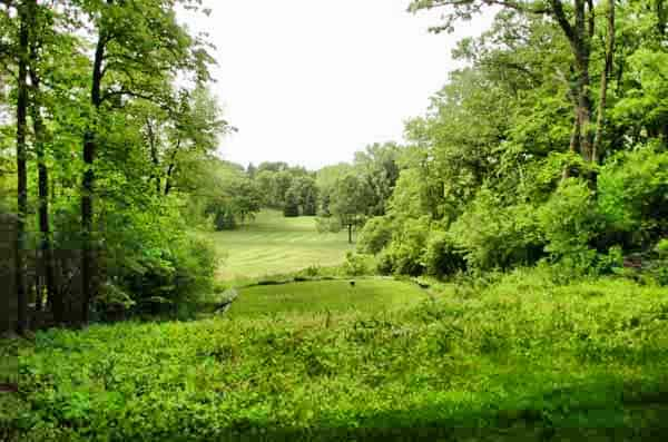 Hole 6 Kenyon Country Club